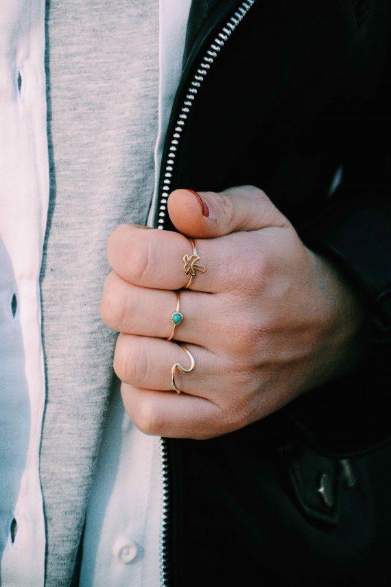 carambola_anillos